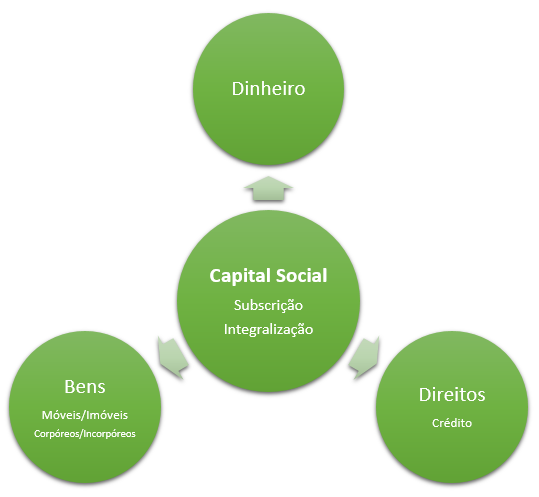 capital social na sociedade anônima