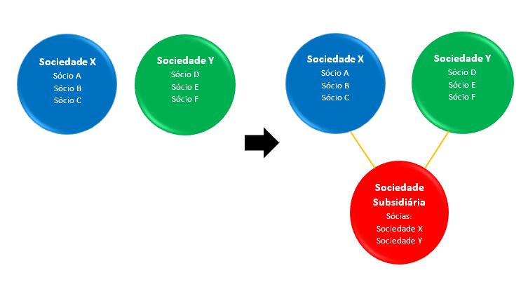 subsidiária em comum