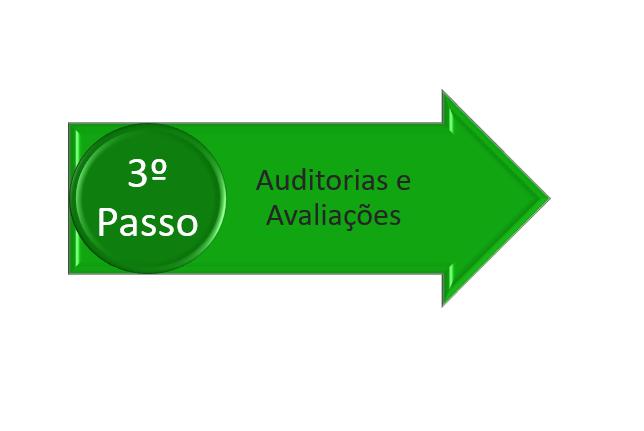 avaliação e auditoria na fusão